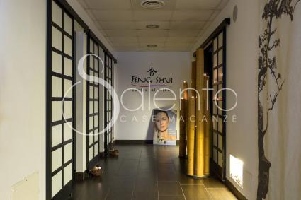 Nell`albergo è presente la SPA / centro benessere Feng Shui